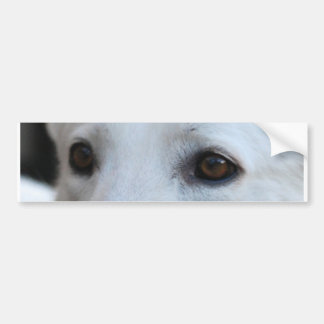 Adesivo De Para-choque olhos brancos do german shepherd