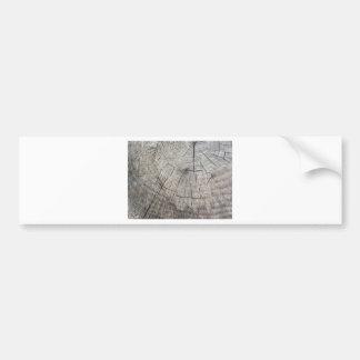 Adesivo De Para-choque Textura de madeira do tronco de pinheiro cortado