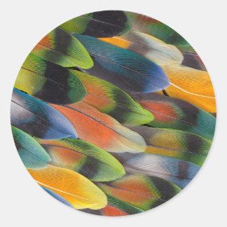 Adesivo Design colorido da pena do Lovebird