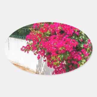 Adesivo Oval Flores vermelhas de bougainville que florescem em