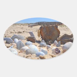 Adesivo Oval Seashells na praia por Shirley Taylor