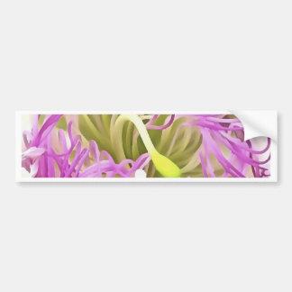 Adesivo Para Carro Flor da flor da alcaparra