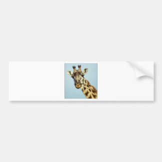 Adesivo Para Carro girafa engraçado