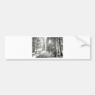 Adesivo Para Carro Máscaras da floresta da luz do sol do inverno das