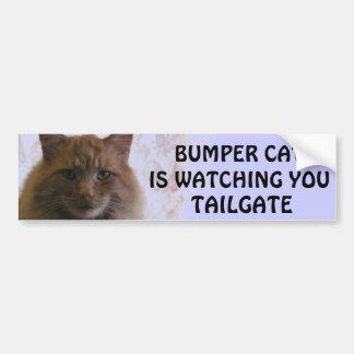 Adesivo Para Carro O gato abundante está olhando-o a BAGAGEIRA 11