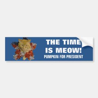 Adesivo Para Carro O tempo é Meow! Abóbora de 2020 grinaldas para o