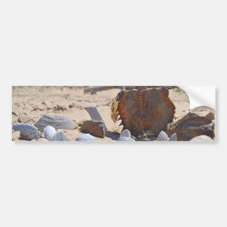 Adesivo Para Carro Seashells na praia por Shirley Taylor