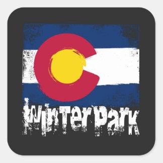 Adesivo Quadrado Bandeira do Grunge do parque do inverno
