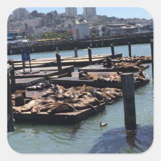 Adesivo Quadrado Cais 39 San Francisco Califórnia