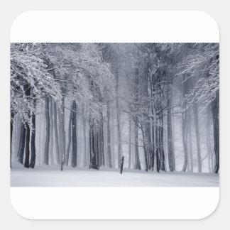 Adesivo Quadrado Cena do inverno