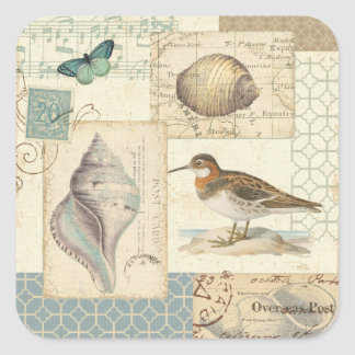 Adesivo Quadrado Colagem do Seashell