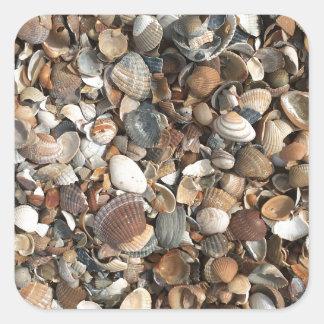 Adesivo Quadrado Escudos do mar