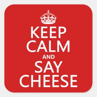 Adesivo Quadrado Mantenha calmo e diga o queijo (fotografia)