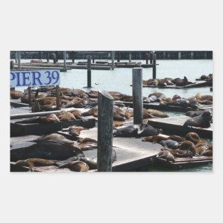 Adesivo Retangular Leões de mar do cais 39 em San Francisco