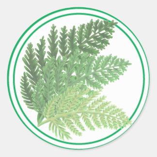 Adesivo Samambaias do verde de musgo