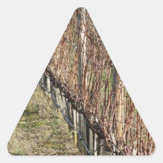 Adesivo Triangular Campo desencapado do vinhedo no inverno. Toscânia,