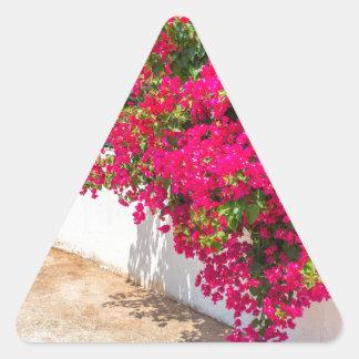 Adesivo Triangular Flores vermelhas de bougainville que florescem em