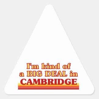 Adesivo Triangular Tipo de I´m de uma grande coisa em Cambridge