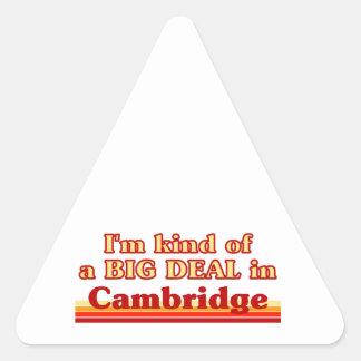 Adesivo Triangular Tipo de I'm de uma grande coisa em Cambridge