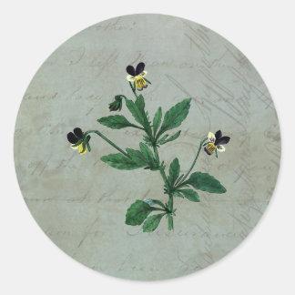 Adesivo Verde cinzento com violas botânicas