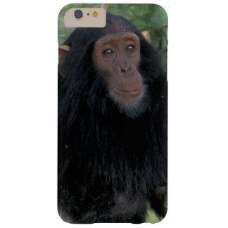 África, East Africa, Tanzânia, criança de Gombe NP Capas iPhone 6 Plus Barely There