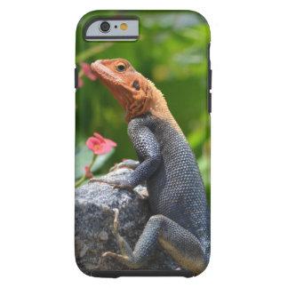 Agamá - o lagarto do arco-íris capa tough para iPhone 6
