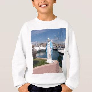 Agasalho Estátua da Virgem Maria