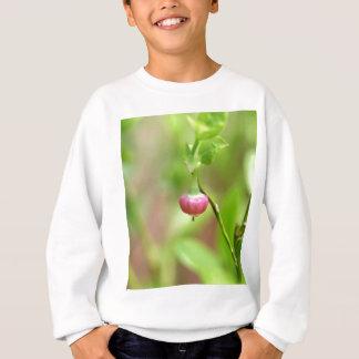 Agasalho Flor em um arbusto de mirtilo europeu