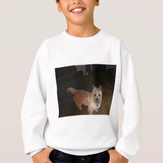 Agasalho Monte de pedras Terrier de Zoe