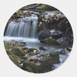 Água do fluxo através da selva adesivo