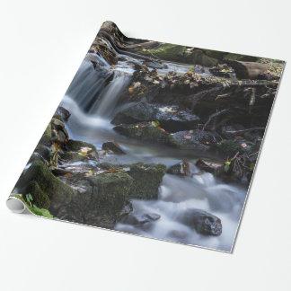 Água do fluxo através da selva papel de presente