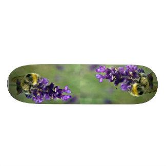 Aguarela do zangão da lavanda shape de skate 18,7cm