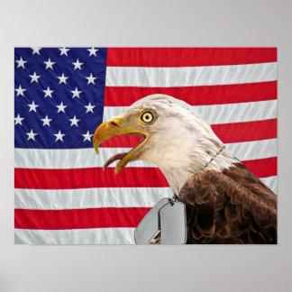 Águia americana com dog tags militar poster