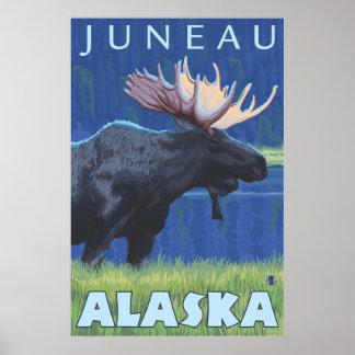 Alces na noite - Juneau, Alaska Pôster