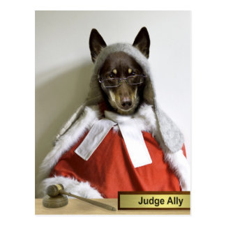 Aliado do juiz cartão postal