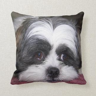 Almofada Cão de Shih Tzu