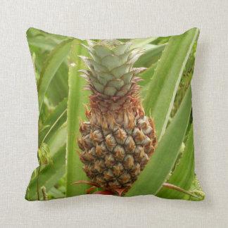 Almofada Fruta tropical do abacaxi selvagem na natureza
