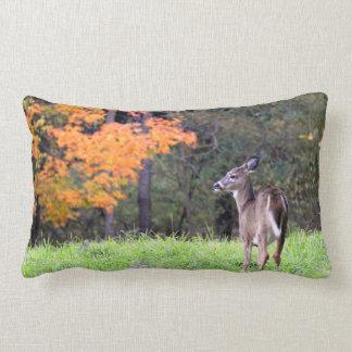 Almofada Lombar Cervos bonitos no campo