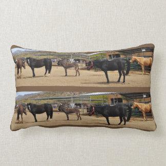 Almofada Lombar Quatro cavalos e um travesseiro decorativo do