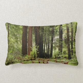 Almofada Lombar Trajeto das madeiras de Muir mim