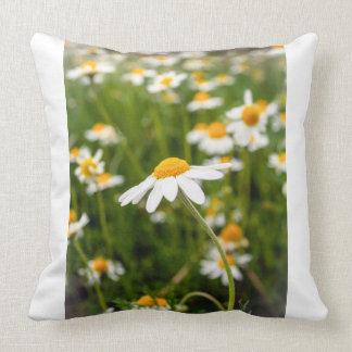 Almofada travesseiro das flores da camomila