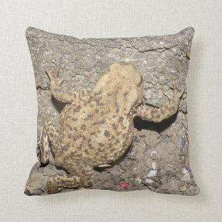 Almofada Travesseiro de rastejamento bonito do sapo