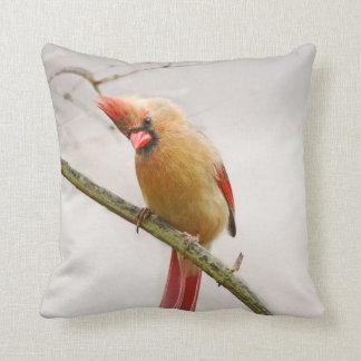 Almofada Travesseiro decorativo cardinal fêmea curioso