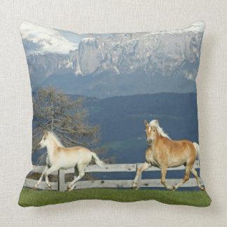 Almofada Travesseiro decorativo dos cavalos