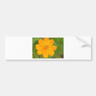 Amarela de Diversos Flor Adesivo Para Carro