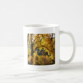 Amarelo do outono da árvore canecas