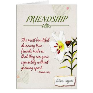 Ame nosso cartão do poema da amizade