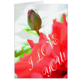 Ame-o Cartão Comemorativo