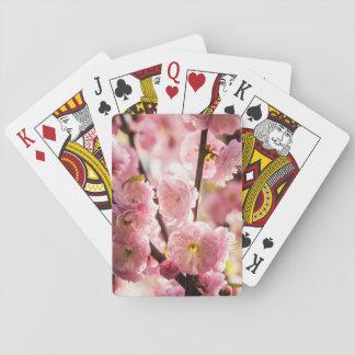 Ameixa de florescência - Paradize cor-de-rosa Cartas De Baralho