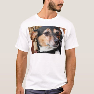 Amigo - Fox Terrier Photo-9 T-shirts
